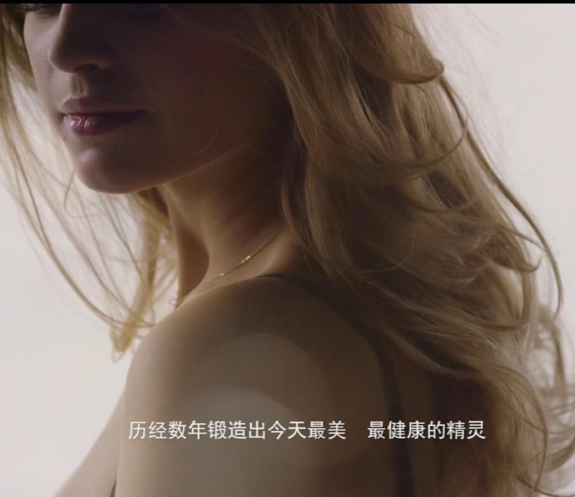 临溪杜仲内衣柜产品宣传片-上海虎置